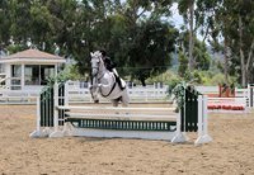 Off the Track Thoroughbreds will compete for $1,000 in prize money in the After the Finish Line Thoroughbred Series at the Del Sol Classic Horse Show on Aug. 15 and 16.  Courtesy photo