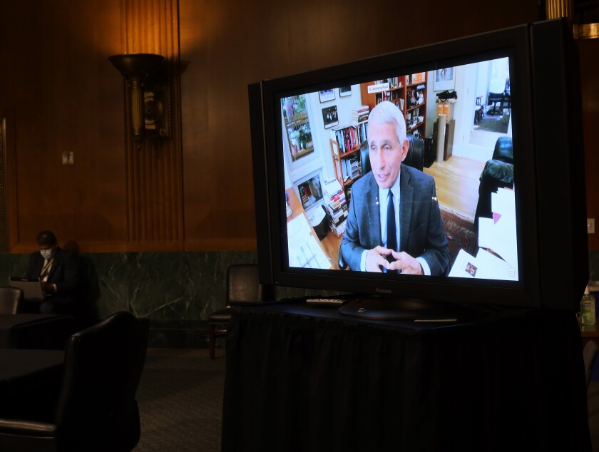 Dr. Anthony Fauci, director of the National Institute of Allergy and Infectious Diseases, testifies remotely before the Senate health committee on Tuesday.