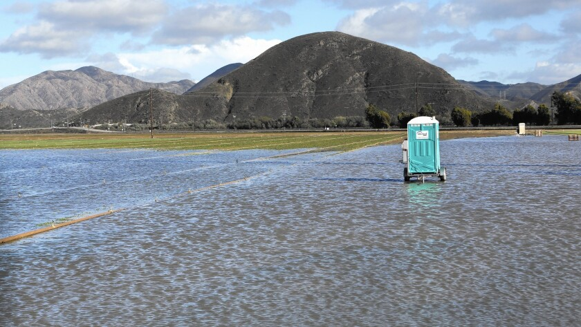 A Pacific Sod field is flooded in Oxnard as a major storm moves through the Southland on Dec. 12.