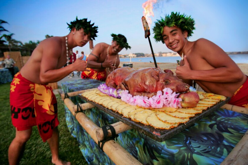 A roast pig is part of dinner during Sunset Luaus at Catamaran Resort Hotel and Spa. (Courtesy photo)