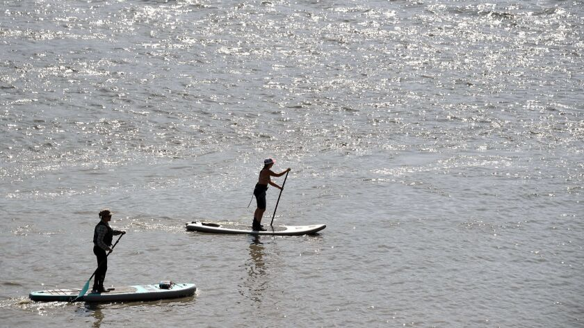 Paddleboarders near Anchorage.