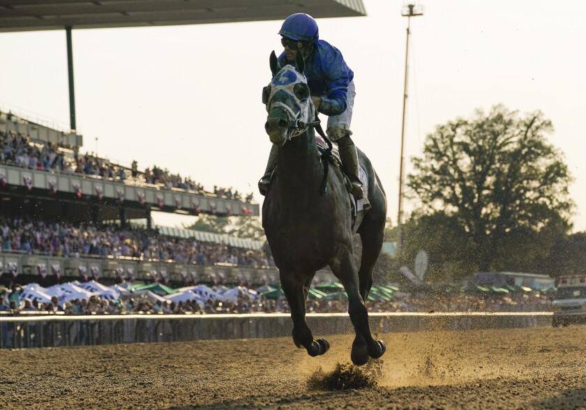 a racehorse and jockey