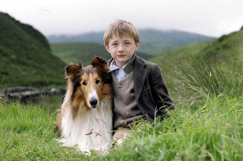 "Jonathan Mason and Lassie star in the movie ""Lassie"" (2006)."