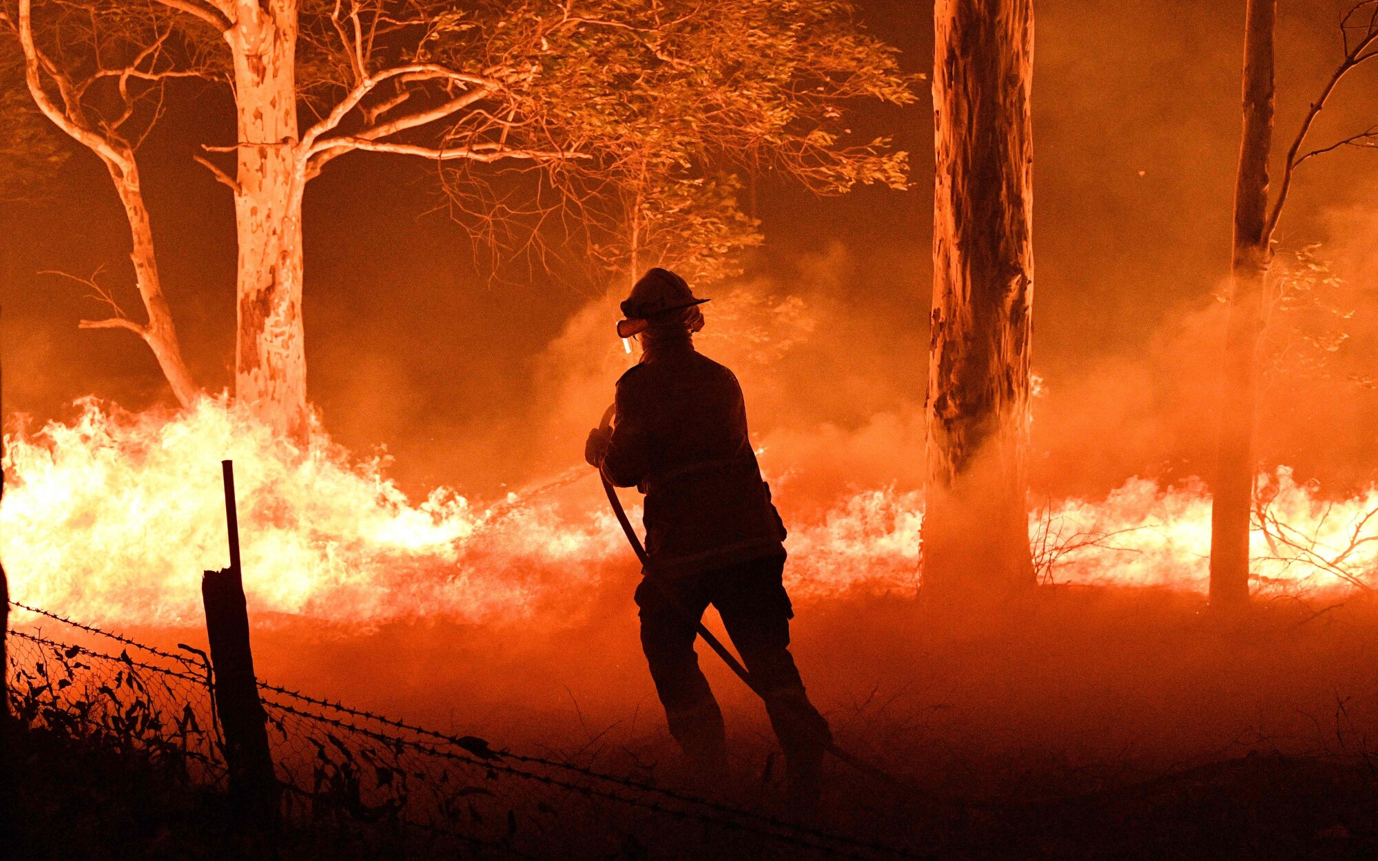 A firefighter hoses down trees and flying embers in an effort to protect nearby houses outside the town of Nowra in the Australian state of New South Wales.