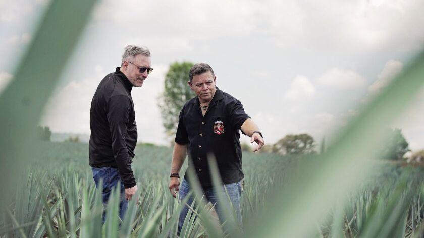 David Warshawsky, Director of Brands, left, in an agave field with Felipe Soto Mares.