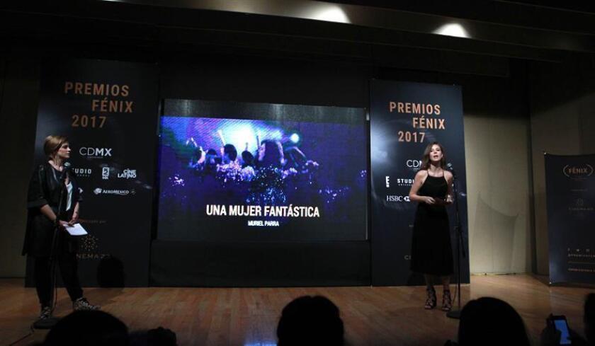 Unas 20 películas de ficción, nueve documentales y trece series televisivas luchan por llevarse uno de los Premios Fénix que mañana se entregarán en el Teatro de la Ciudad Esperanza Iris de la Ciudad de México. EFE/ARCHIVO
