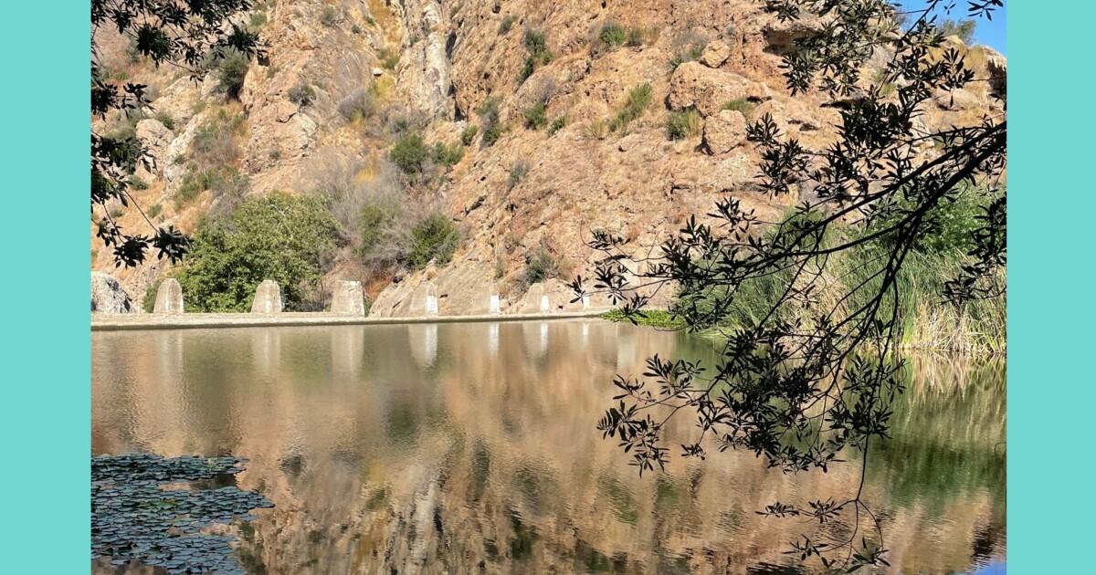 L.A.'s secret water hole hidden in plain sight