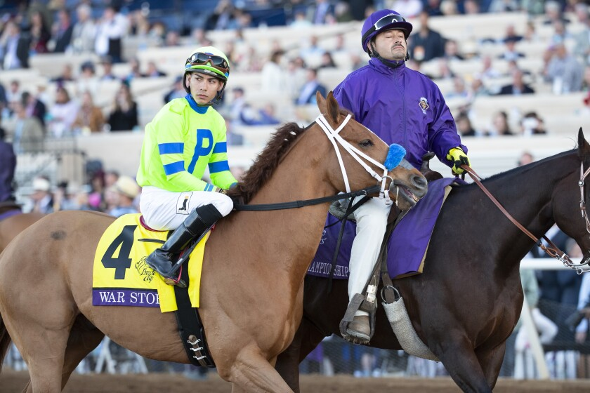 War Story, with jockey Jose Ortiz, in the post parade before the 2017 Breeders' Cup Classic at Del Mar. He finished fourth that day at 56-1 odds.