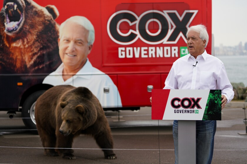 John Cox campaigns with bear.