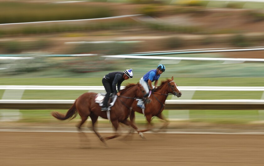 Horses trained by Bob Hess Jr. run at the Del Mar Thoroughbred Club.