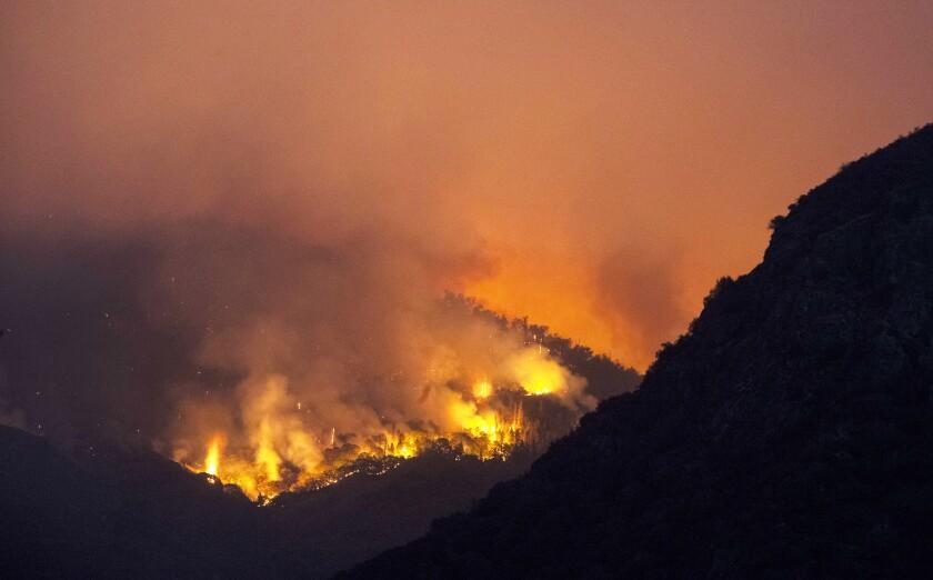 Flames on a hillside.
