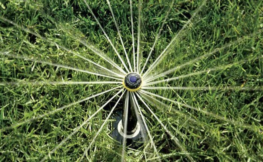 A rotary irrigation nozzle made by Rain Bird.