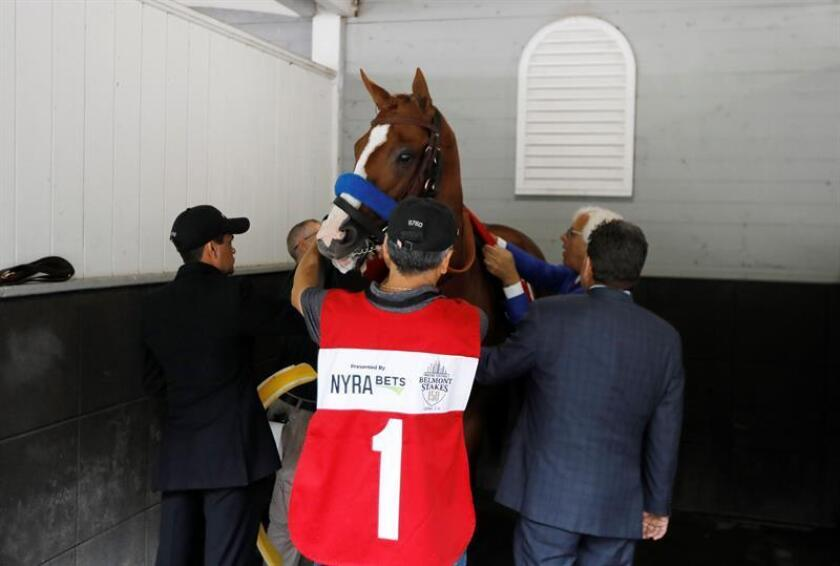 Bob Baffert, (R, back) trainer with his horse Justify in the paddock before the 150th running of Belmont Stakes at Belmont race track in Queens, New York, USA, 09 June 2018. Justify went on to win the Triple Crown is the second horse to do so in the past three years. EFE
