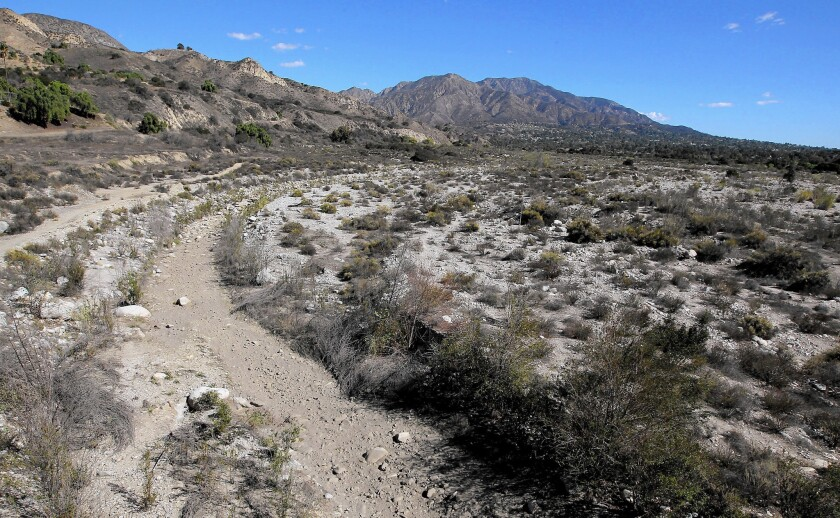 The mountains above the Tujunga Wash in Sunland are alone one of the proposed routes where tunnels would be dug for the bullet train.