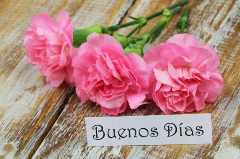 ¿Te has preguntado alguna vez por qué en español decimos buenos días, buenas tardes y buenas noches, así, en plural?