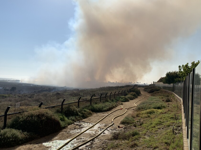 A small brush fire in the Bolsa Chica wetlands