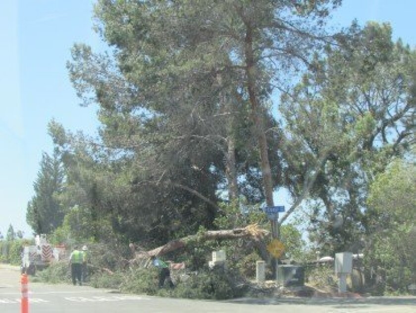 The scene at Coast and Torrey Pines Road about 12:30 p.m. April 30. Susan DeMaggio