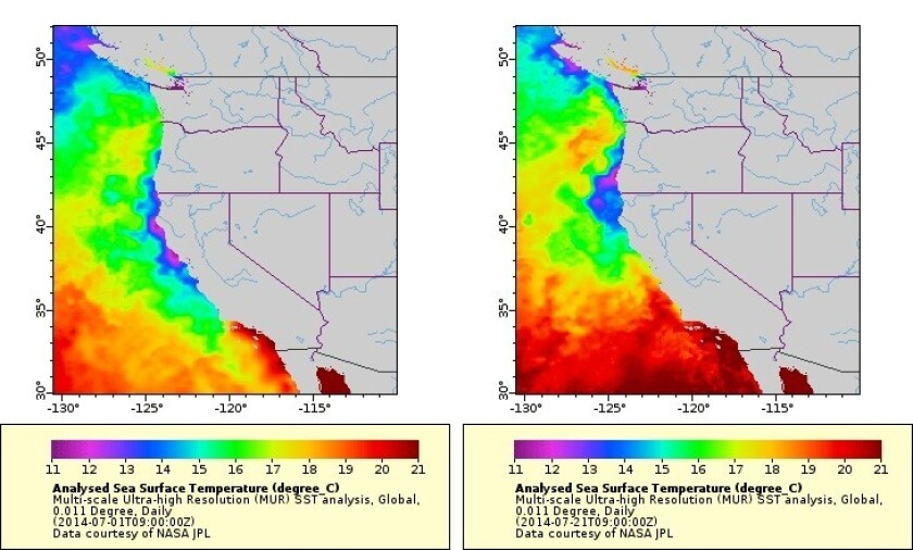 Satellite images show the warming reported off the Central California coast during the first three weeks of July.