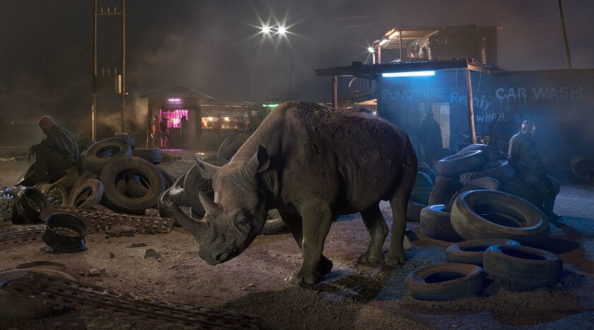 """Garage With Blind Rhino"""