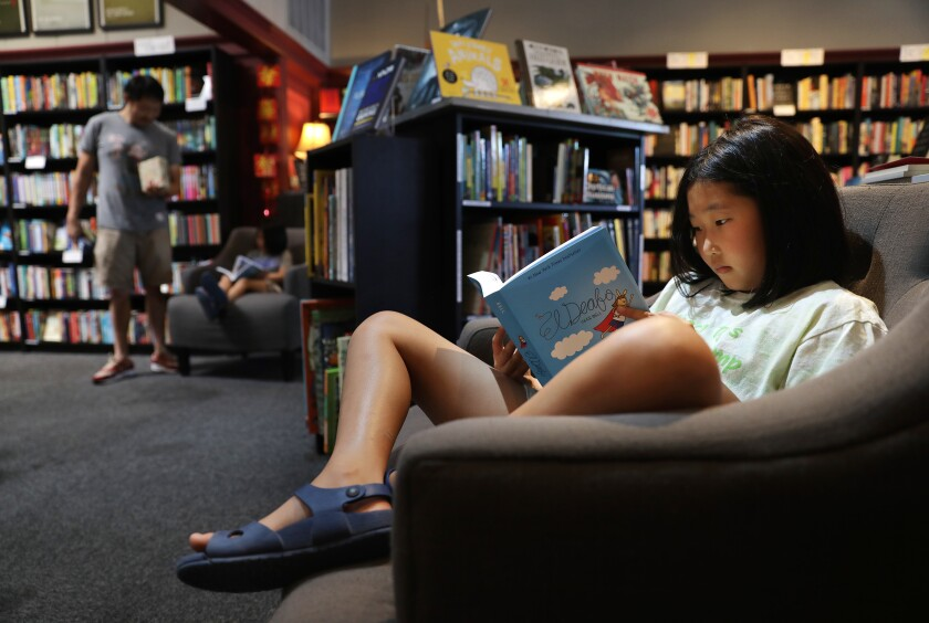 At a bookstore, a girl reads a book while sitting in a chair.