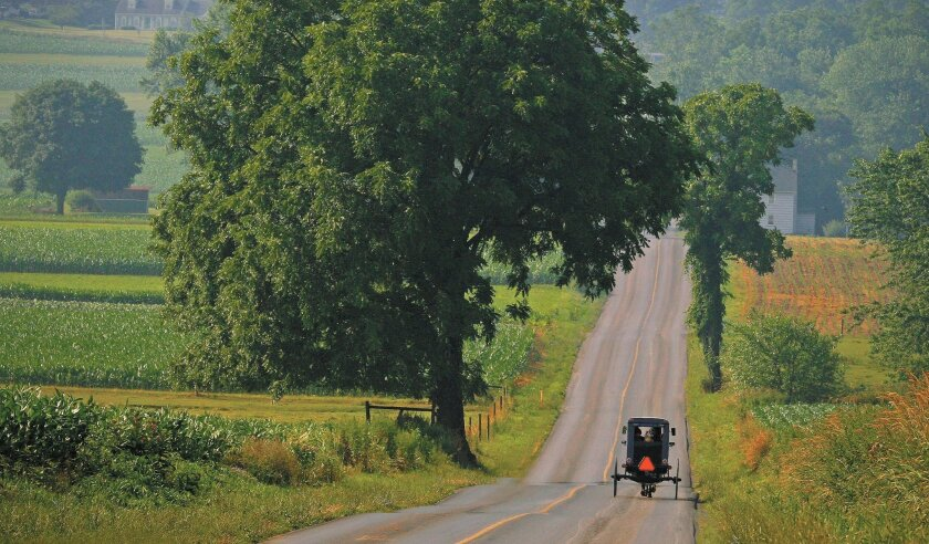 An Amish buggy rides on a backcountry road in Lancaster County, Pa.
