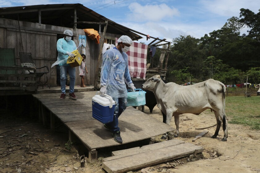 Health workers Diego Feitosa Ferreira, 28, right, and Clemilton Lopes de Oliveira, 41, leave a home after a resident denied to be vaccinated against the new coronavirus, in the Capacini community, along the Purus river, in the Labrea municipality, Amazonas state, Brazil, Friday, Feb. 12, 2021. Navigating complex waterways to reach remote communities in Brazil's Amazon is only the first challenge for the healthcare workers vaccinating Indigenous and riverine people against COVID-19. (AP Photo/Edmar Barros)