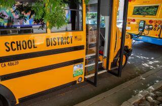 California lawmakers OK medical marijuana in schools - The