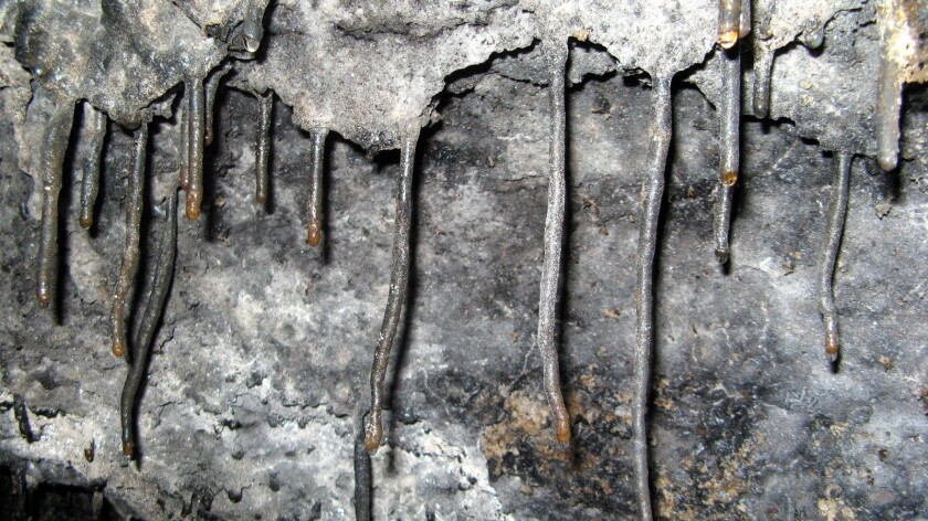 Stalactites formed by lava that cooled following volcanic eruptions centuries ago are seen during a trek beneath Hawaii Volcanoes National Park.