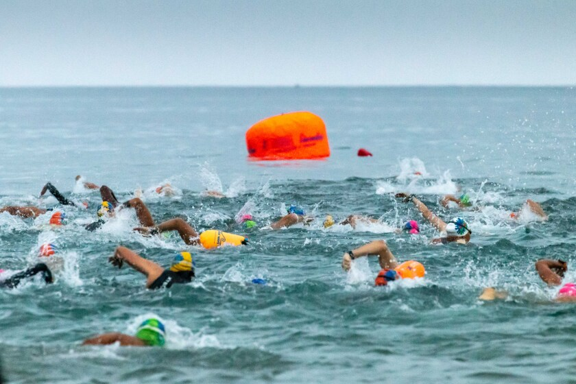 About 650 people swam at least part of the La Jolla Cove 10 Mile Relay on Sept. 26.