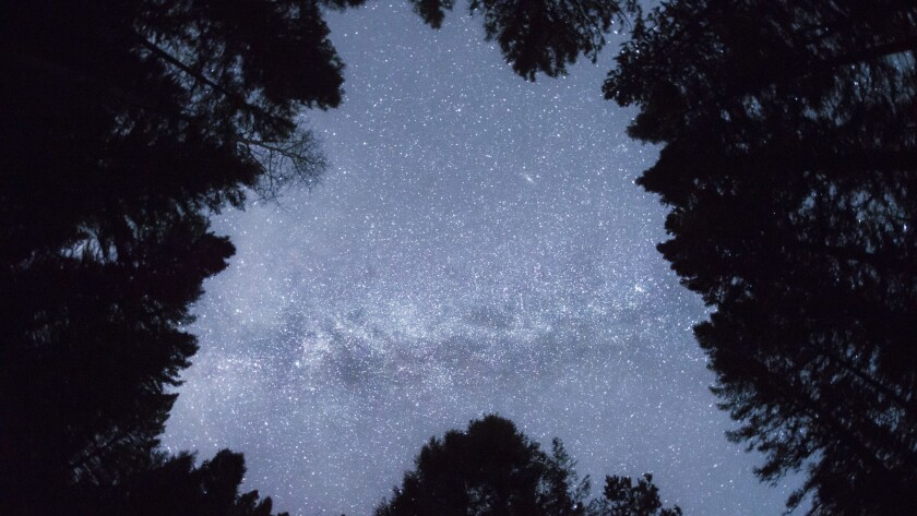The night sky, something for insomniacs to contemplate.