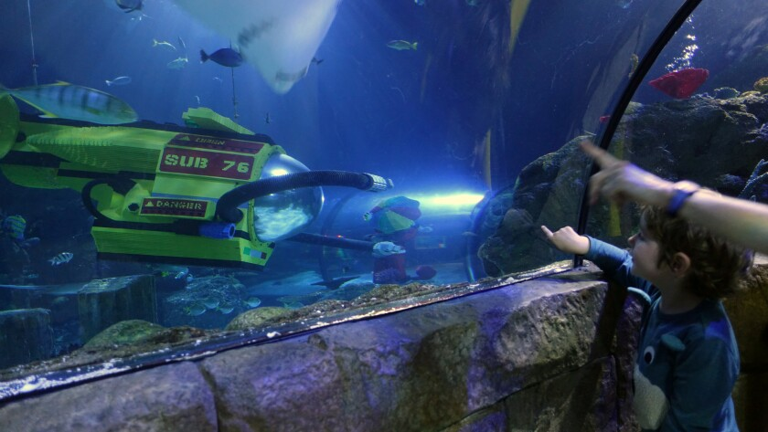 Carlsbad CA – June 25, 2018: Kids get up close and personal with marine life in LEGOLAND'S Sea Life