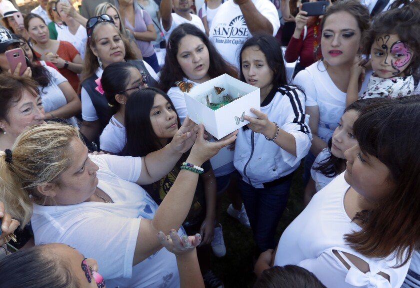 SAN JOSE, CA AUGUST 4, 2019: Keyla Salazar, a 13-year-old girl was killed in the Gilroy Garlic Festival shooting last Sunday. Today would have been her 14 birthday. Family and friends gathered around and released butterflies honoring Keyla in San Jose, CA August 4, 2019. (Francine Orr/ Los Angeles Times)