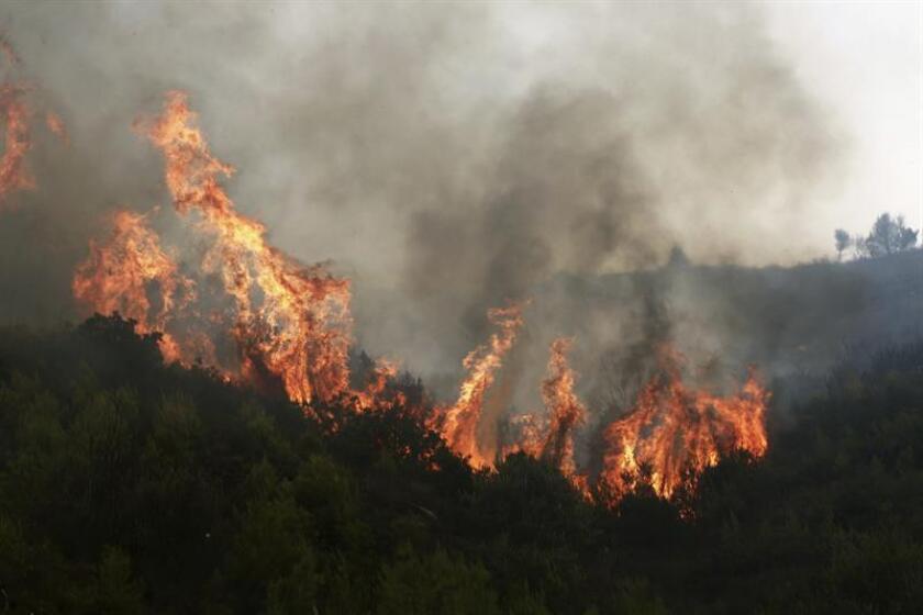 El Gobierno mexicano, por medio de la Secretaría de Relaciones Exteriores (SRE, Cancillería), lamentó hoy la pérdida de vidas humanas debido a los incendios ocurridos en Grecia, donde el fuego ha cobrado por el momento 74 vidas y ha dejado 182 heridos. EFE/ARCHIVO
