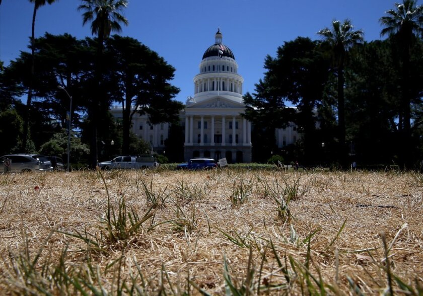 The California Capitol lawn shows the effects of drought. A new study shows that high temperatures combined with low precipitation make the current three-year drought the worst in 1,200 years.