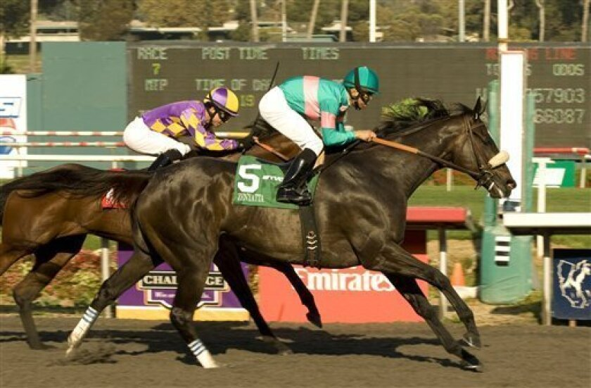In this photo released by Benoit Photo, Zenyatta (5), with jockey Mike Smith aboard, wins the Grade I $250,000 Lady's Secret Stakes horse race, Saturday, Oct. 2, 2010, at Oak Tree at Hollywood Park, in Inglewood, Calif. Switch and Alonso Quinonez, inside, finished second. (AP Photo/Benoit Photo) NO SALES