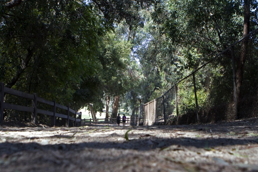 Two runners jog along a path in Griffith Park.