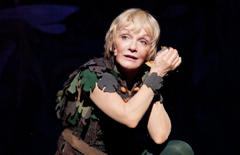 """Cathy Rigby has played the title role in the Broadway and touring versions of """"Peter Pan"""" off and on for more than two decades."""