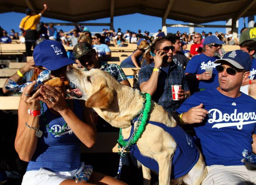 If dogs were people, some would leave in the 7th inning