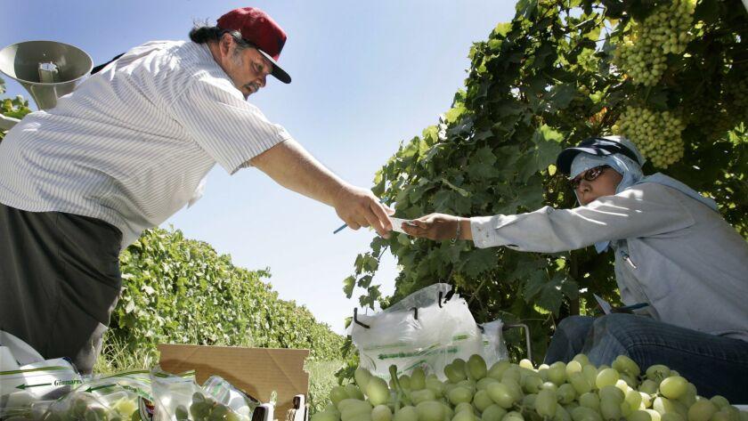 John Giumarra Jr , grape industry giant who battled Cesar