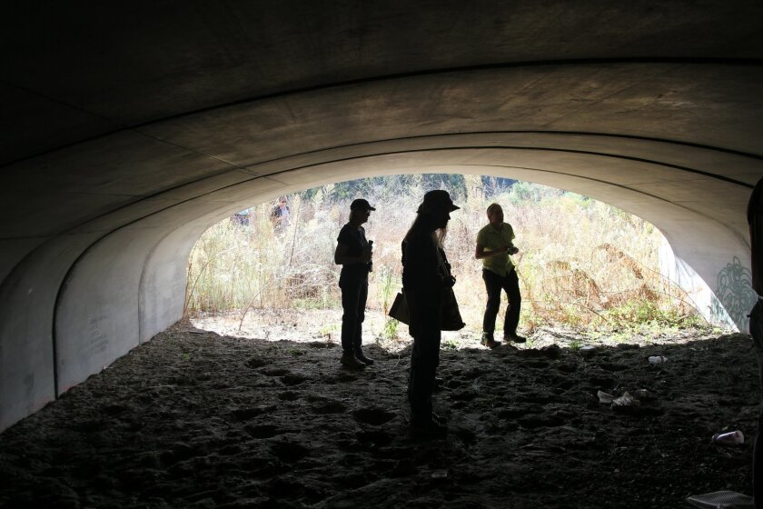 The group checks out a wildlife under-crossing under El Camino Real.
