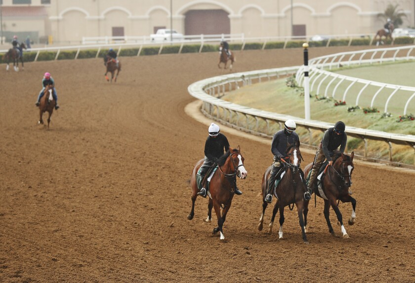 Horses get in their morning workout at Del Mar.