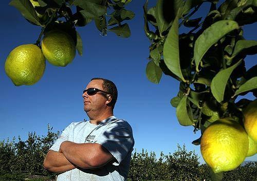 Fallbrook Citrus rancher