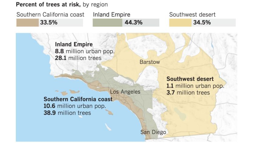 Nearly 38% of all trees in Southern California's most populated regions are at risk of dying due to