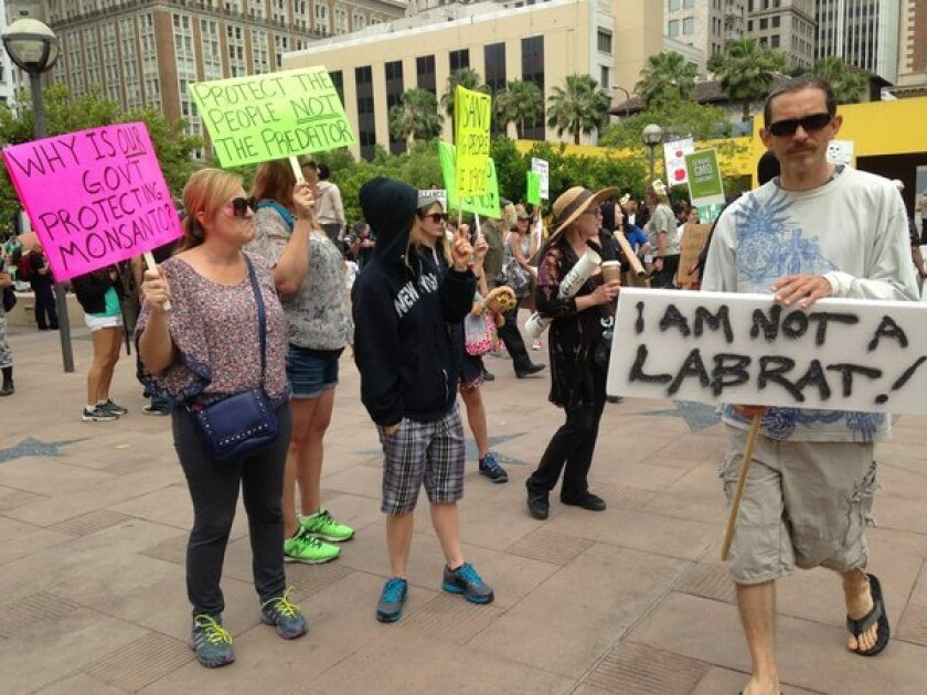 Protesters gather in Pershing Square in downtown Los Angeles on Saturday as part of a global protest against seed giant Monsanto and genetically modified food.