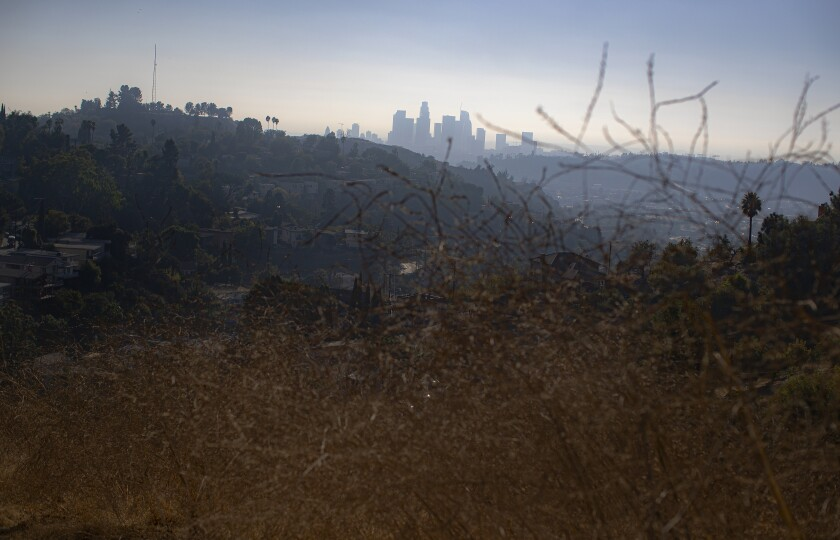 You can see the skyline of downtown Los Angeles as you approach Peanut Lake.