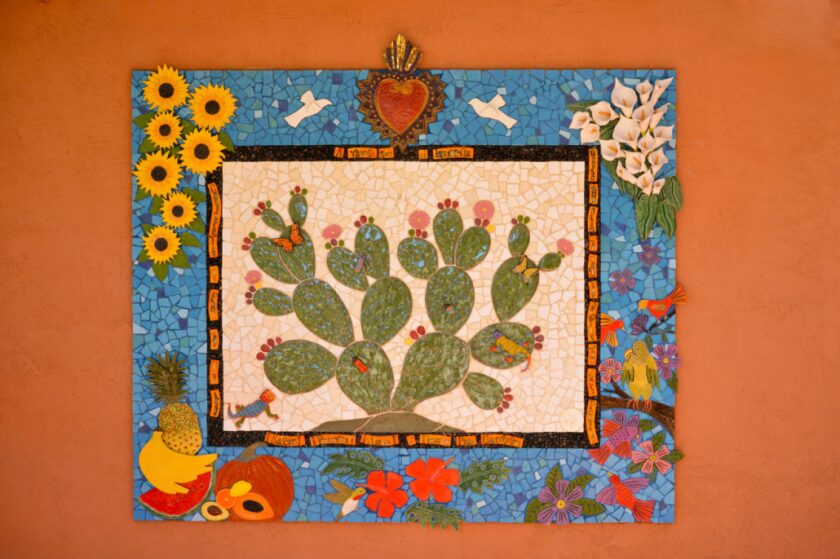 Cactus Tree of Life by Marsha Rafter