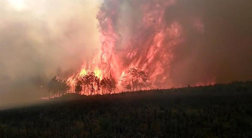 Fotografía cedida hoy lunes por Protección Civil del estado de Veracruz (México), de un fuerte incendio forestal incontrolable que arrasa hoy lunes con cientos de hectáreas de bosques de pino y amenaza a media docena de poblados en el estado mexicano de Veracruz. EFE/SOLO USO EDITORIAL