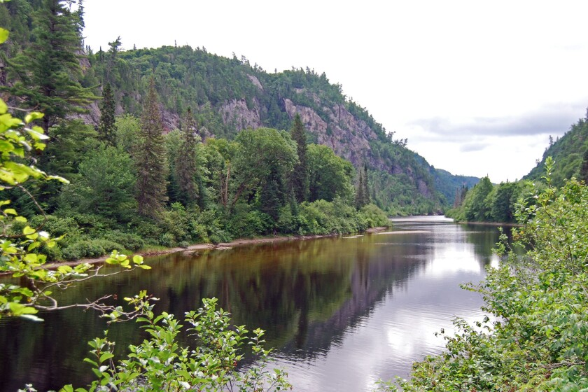 The River Trail offers an easy, level walk along the Agawa River.