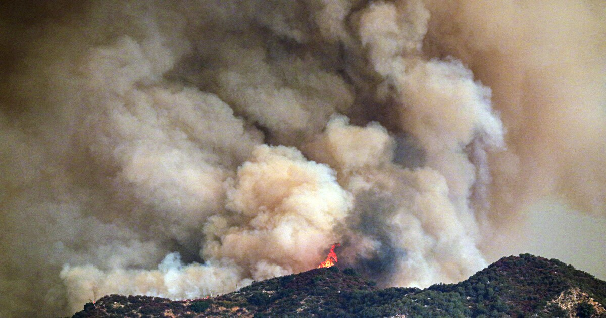 Bobcat fire mushrooms, doubling in size in one day in San Gabriel Mountains