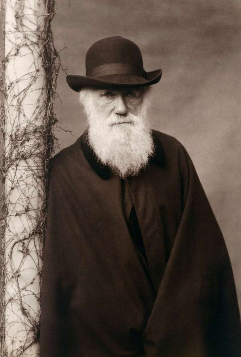 Charles Darwin was born on Feb. 12, 1809 (the same day as Abraham Lincoln). Efforts to declare a publicly recognized Darwin Day have had limited success.